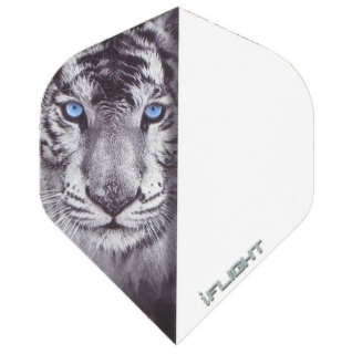 i-Flight Standard Flights Tiger